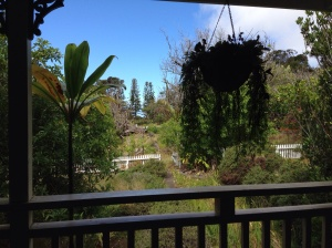 View from our porch at the former Rockefeller estate in Waimea