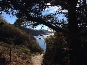 Point Lobos Thanksgiving Day, 2014