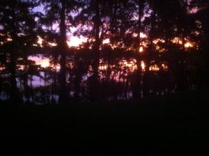 Lake Ivanhoe